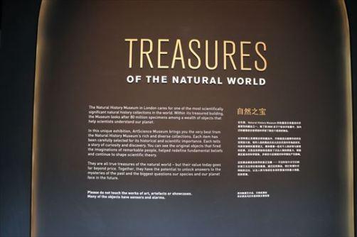 ArtScienceMuseum10_R