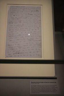 ダーウィンの自筆原稿