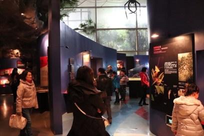ScienceTechnologyMuseum29_R
