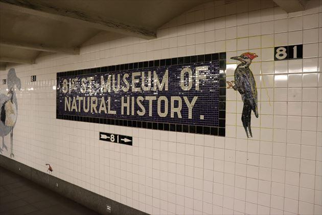 地下鉄の駅も自然史博物館にふさわしいものになっています