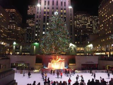 季節の風物詩、アイススケート・リンクとツリー