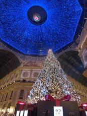ミラノのクリスマス・ツリー
