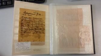 Van Groenendael letter, Naturalis