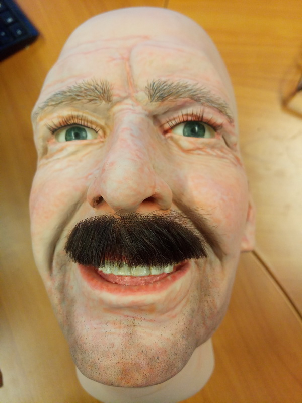 Display mannequin head with walrus style moustache