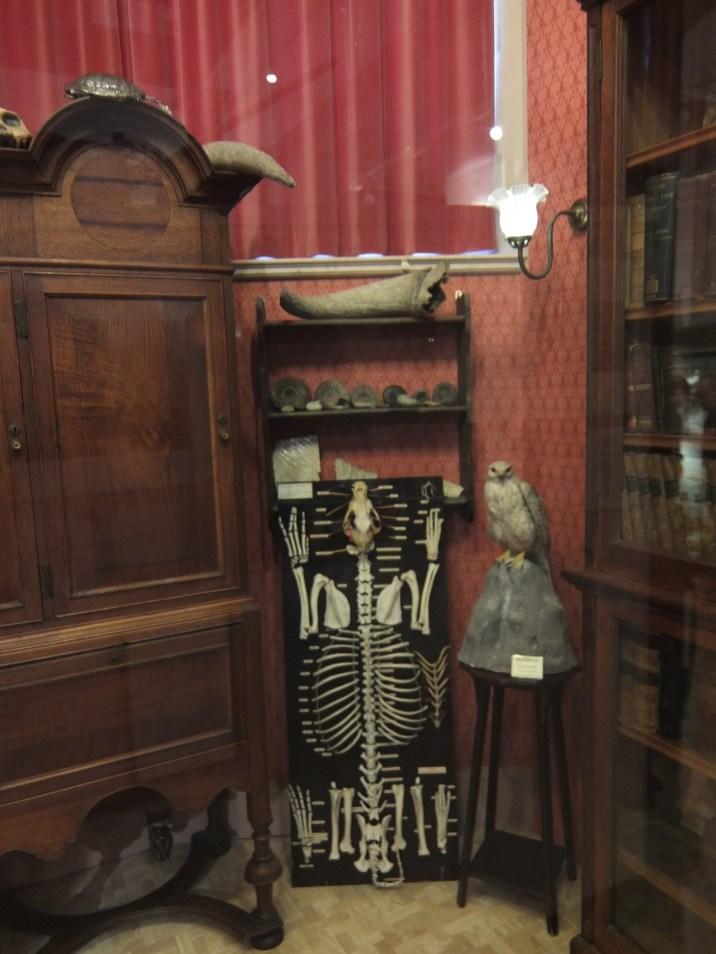huxleys-study-eton-college-natural-history-museum