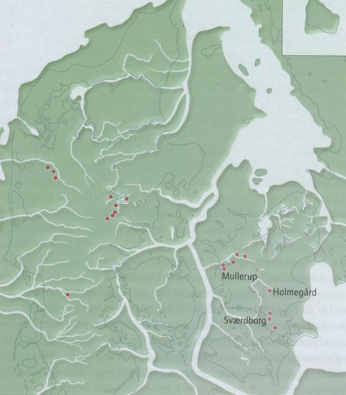 Ravsmykker fra Kattegats bund