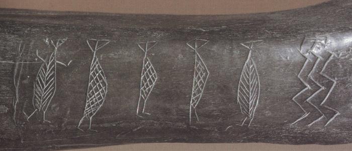 urokseknoglen fra Ryemarksgård