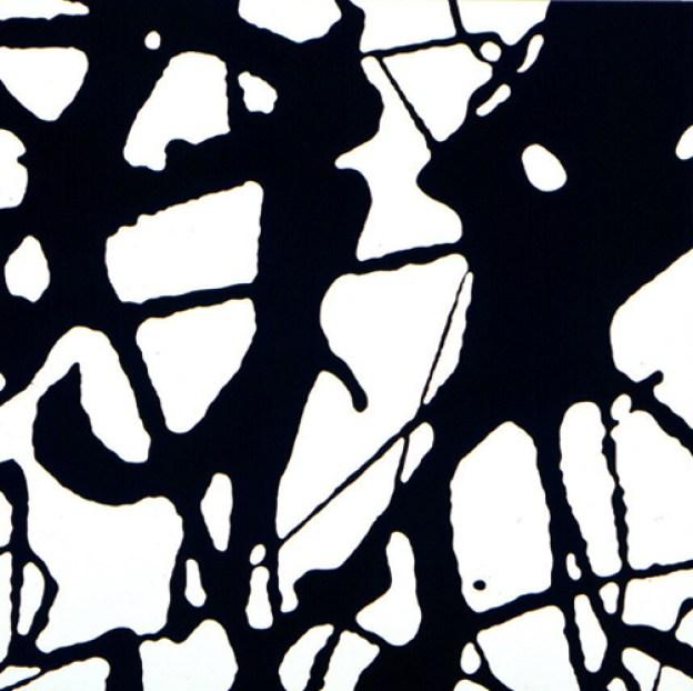 Daan van Golden, Study Pollock, 1994