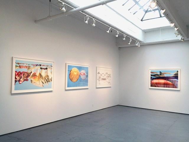 sally-gall_aerial_julie-saul-gallery