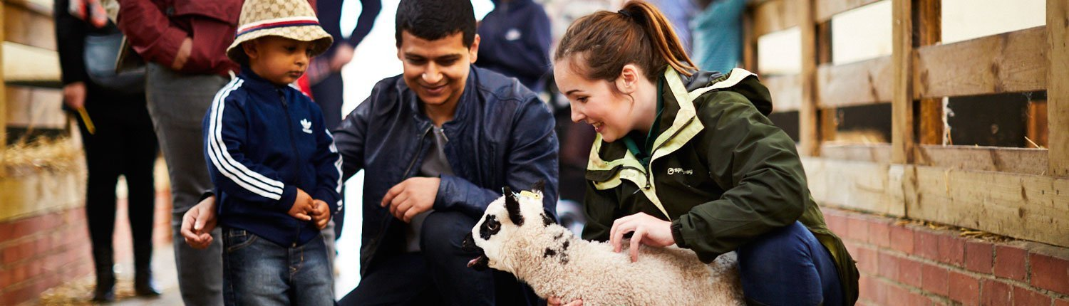 Image of family meeting a lamb
