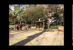 historisches museum frankfurt – Juergen Klee: Über das Gedenken an die Drogenopfer in der Taunusanlage