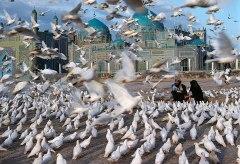 Museum für Gestaltung – In Conversation with Steve McCurry – Blue Mosque