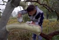 Trailer: Ariel Schlesinger wird Kunstwerk im Lichthof des neuen Jüdischen Museums gestalten