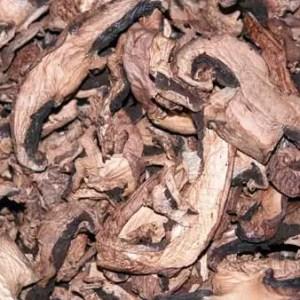 Dried Portobella Mushrooms-4