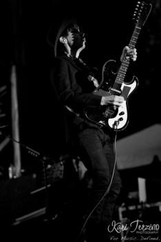 Beck at Pitchfork