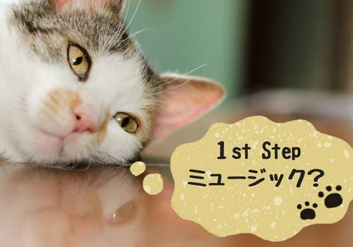 1st Step ミュージック 名前の由来 市川市 音楽教室