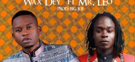 #Cameroon: Music: Wax Dey – Better ft. Mr. Leo (Prod. by Big Joe.)