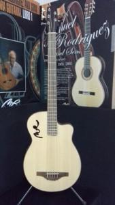 Bass Acoustic Guitar MR