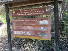 giant-tortoise-welcome-sign-7-13-16-0332