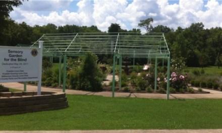 A Sensory Garden Experience