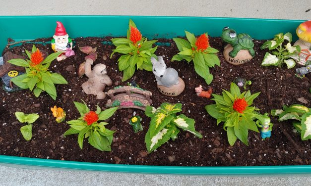 Fairy Gardening Fun with your Kids