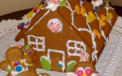 Ideas for a Safe Holiday Season