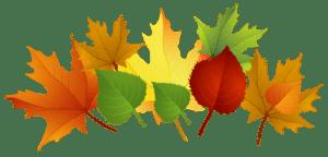 fall-clip-art