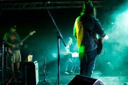 Finnigan-Denson Project - 2016 Miami Valley Music Fest-0240