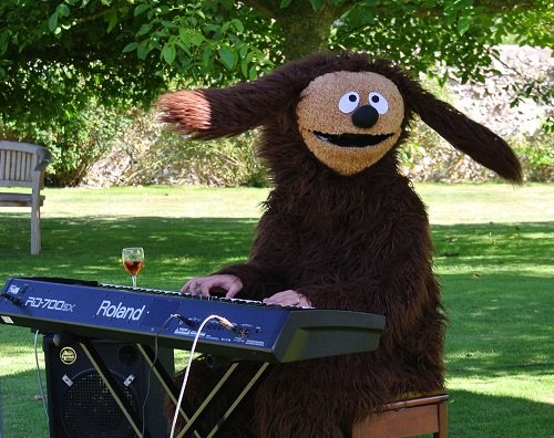 ROWLF SWINGS EARS