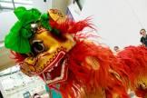 Beautiful-Chinese-Lion-Head-Shot2