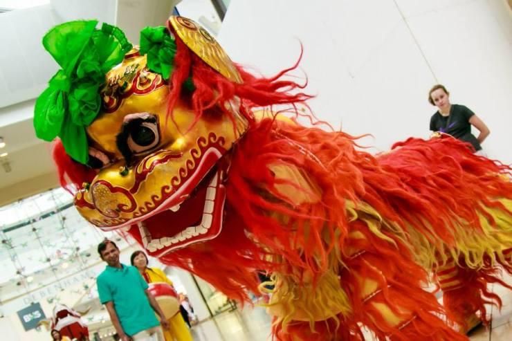 Beautiful-Chinese-Lion-Head-Shot3