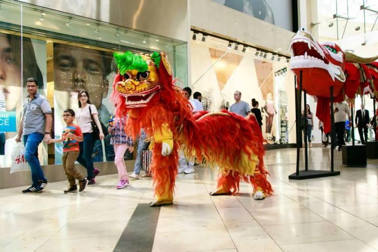 Chinese-Lion-Dance-Leg-Up