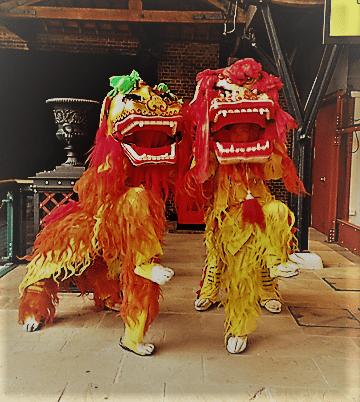 Double-Lions
