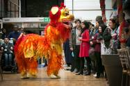 Lion-Dance-Year of the Rooster
