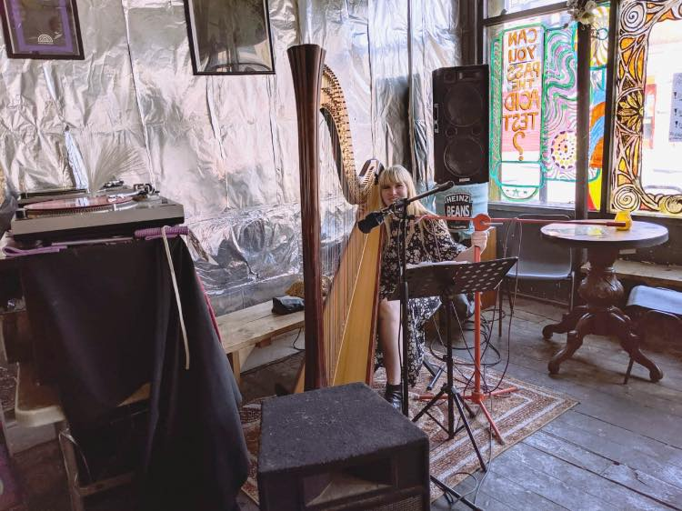 Harpist in London Venue