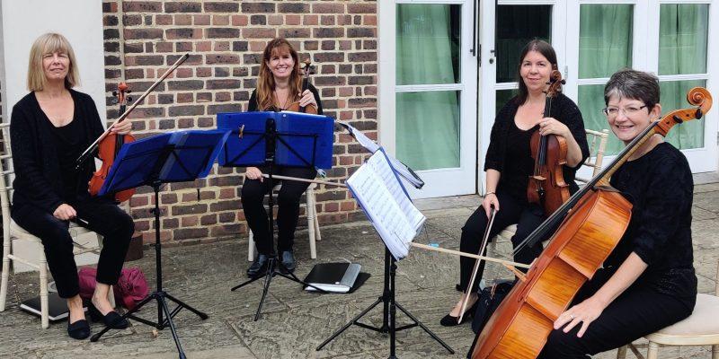 Low Cost String Quartet