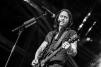 1612_alterbridge_044