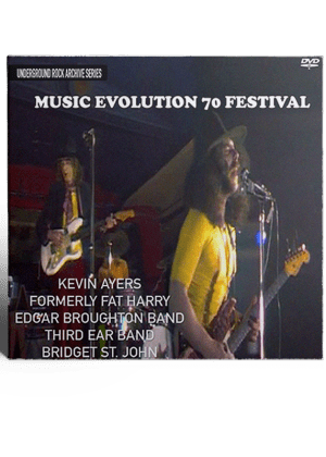 Music Evolution Fest cover