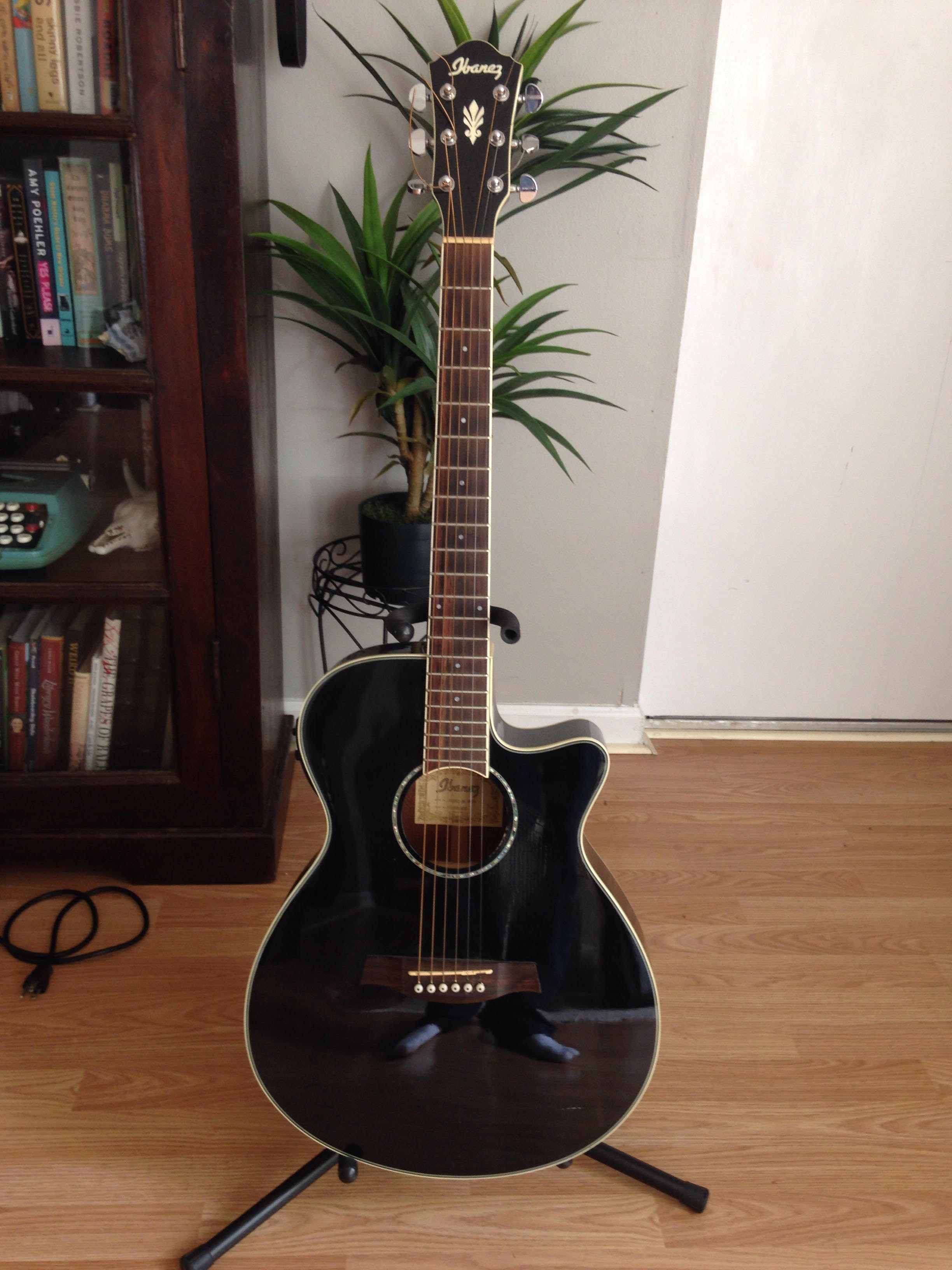 Ibanez AEG10II Acoustic Electric Guitar For Sale