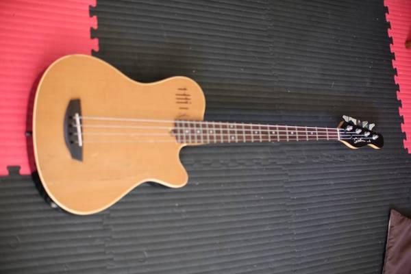 Godin A4 Acoustic bass