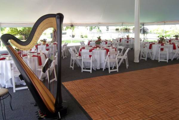 Harpist for Omaha Weddings and Events
