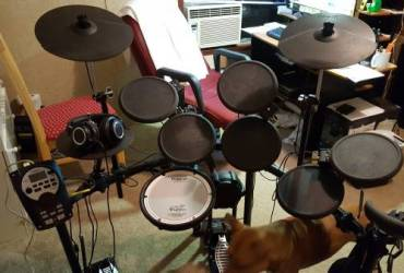 Experienced Drummer Looking For Band – Local/Studio/fill in
