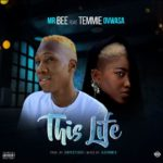 FAST DOWNLOAD:! Mr Bee ft. Temmie Ovwasa – This Life