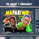 MUSIC + VIDEO: Tee Smart X Zinoleesky – Mapariwo (Refix) Prod. By Jaytunes