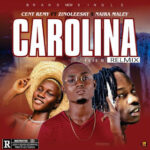 FAST DOWNLOAD: Cent Remy Ft Zinoleesky x Naira Marley – Carolina