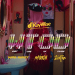 VIDEO: DJ Kaywise x Mayorkun, Naira Marley, Zlatan – What Type Of Dance