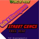 FREEBEAT: GZik Ft Dj Swagman – Street Gengz Beat