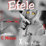 T Mizzy Ft Mr Fellow – Efele