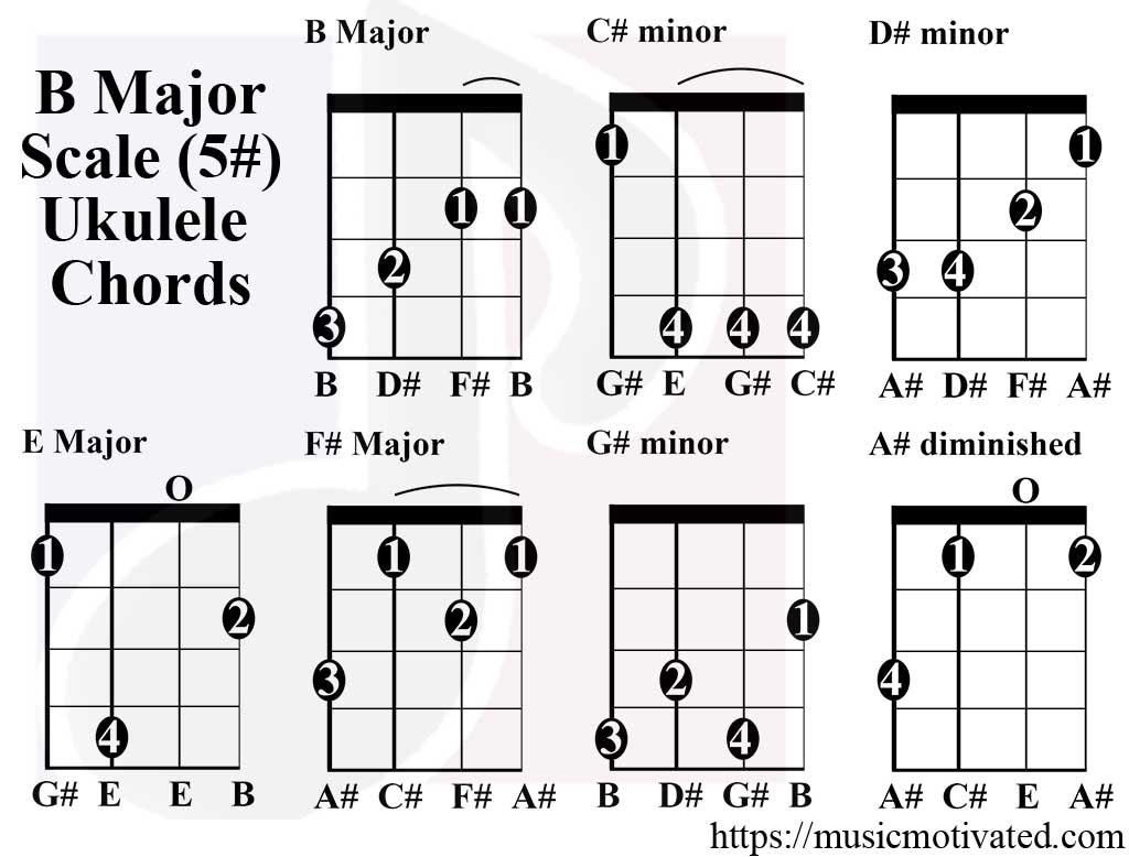 B Major Key