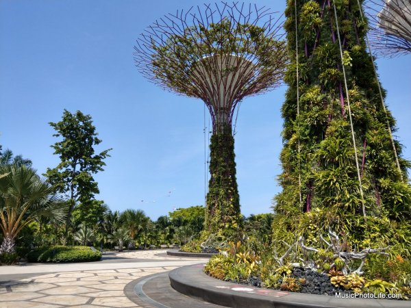 HTC U11 test image, Gardens by the Bay, review by musicphotolife.com